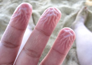Wrinkled fingers explained by osmosis