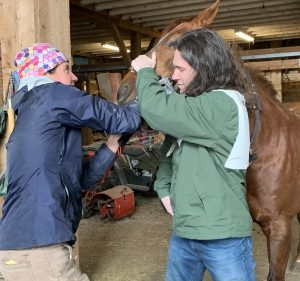 Riding with an Equine Veterinarian