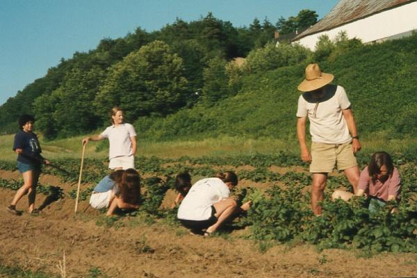 Beautiful Dartmouth Farm Style