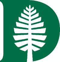 Dartmouth Pine