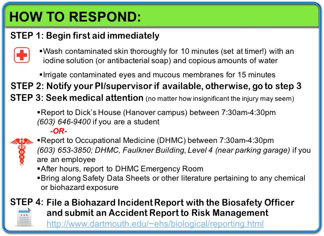 Incident Response Steps