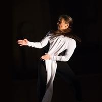 Big Move: Dancer Emmanuèle Phuon with ecologist Tom Wessels